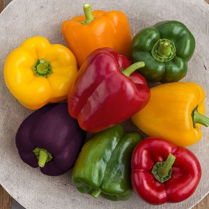 Sweet Pepper Sweet Bell Hybrid Mix